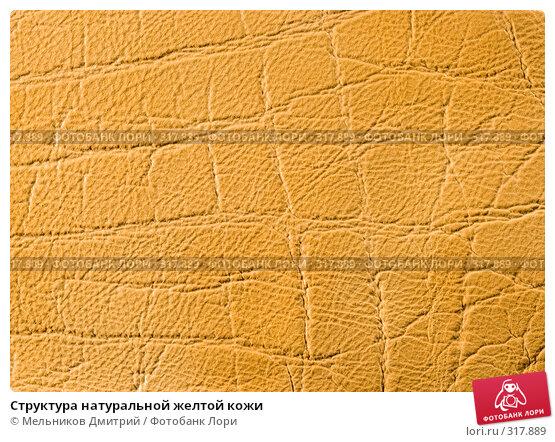 Структура натуральной желтой кожи, фото № 317889, снято 11 мая 2008 г. (c) Мельников Дмитрий / Фотобанк Лори