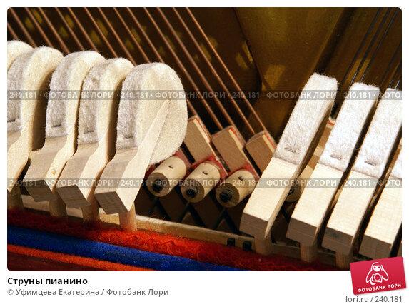 Струны пианино, фото № 240181, снято 1 мая 2017 г. (c) Уфимцева Екатерина / Фотобанк Лори