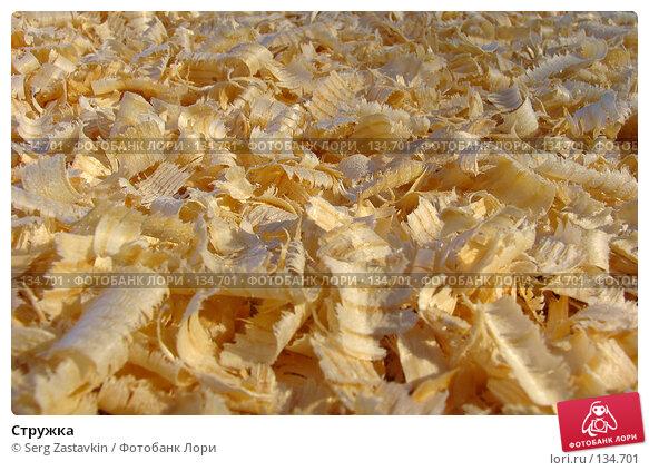 Стружка, фото № 134701, снято 21 декабря 2005 г. (c) Serg Zastavkin / Фотобанк Лори
