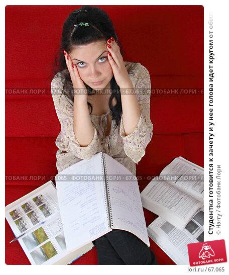 Студентка готовится к зачету и у нее голова идет кругом от обилия информации, фото № 67065, снято 21 июня 2007 г. (c) Harry / Фотобанк Лори