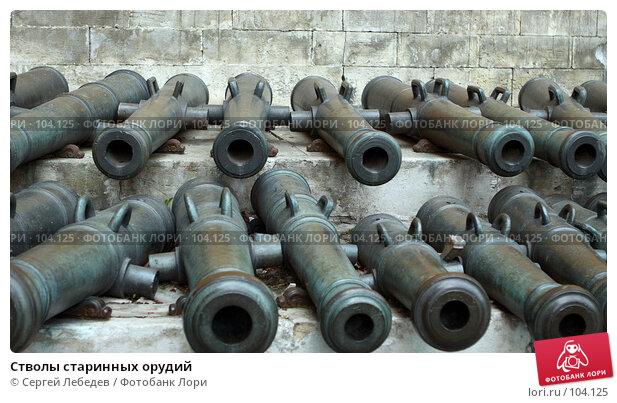 Стволы старинных орудий, фото № 104125, снято 5 декабря 2016 г. (c) Сергей Лебедев / Фотобанк Лори