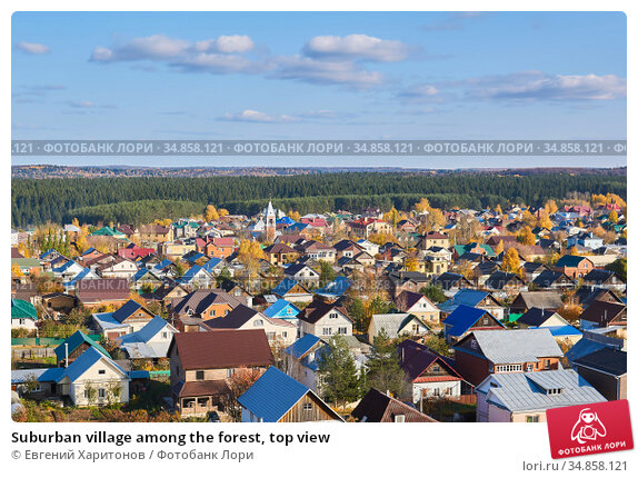 Suburban village among the forest, top view. Стоковое фото, фотограф Евгений Харитонов / Фотобанк Лори