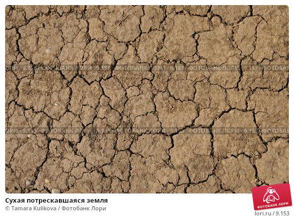 Купить «Сухая потрескавшаяся земля», фото № 9153, снято 10 сентября 2006 г. (c) Tamara Kulikova / Фотобанк Лори