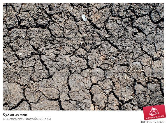 Сухая земля, фото № 174329, снято 11 мая 2007 г. (c) AlexValent / Фотобанк Лори