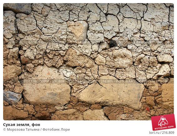 Купить «Сухая земля, фон», фото № 216809, снято 24 февраля 2008 г. (c) Морозова Татьяна / Фотобанк Лори