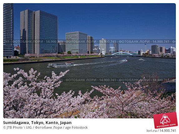Купить «Sumidagawa, Tokyo, Kanto, Japan», фото № 14900741, снято 19 июня 2018 г. (c) age Fotostock / Фотобанк Лори