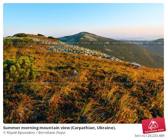 Купить «Summer morning mountain view (Carpathian, Ukraine).», фото № 24233489, снято 21 августа 2016 г. (c) Юрий Брыкайло / Фотобанк Лори