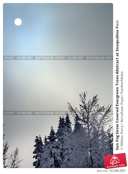 snowcover thesis