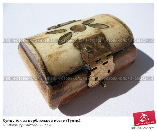 Купить «Сундучок из верблюжьей кости (Тунис)», фото № 265993, снято 26 апреля 2008 г. (c) Заноза-Ру / Фотобанк Лори