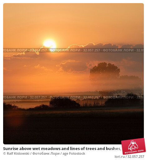 Sunrise above wet meadows and lines of trees and bushes, rural countryside, sun shining on morning mist, morning mood full of atmosphere. Стоковое фото, фотограф Ralf Kistowski / age Fotostock / Фотобанк Лори