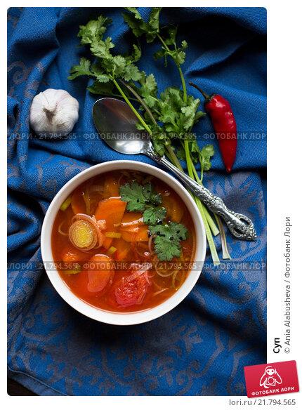 Суп. Стоковое фото, фотограф Ania Alabusheva / Фотобанк Лори