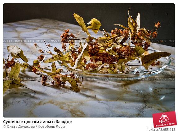Купить «Сушеные цветки липы в блюдце», фото № 3955113, снято 22 октября 2012 г. (c) Ольга Денисова / Фотобанк Лори