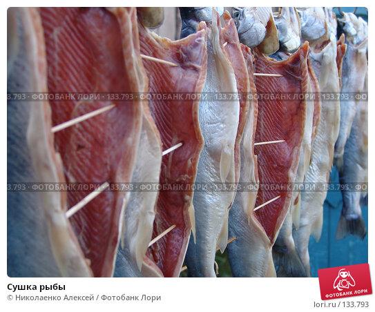 Сушка рыбы, фото № 133793, снято 6 августа 2005 г. (c) Николаенко Алексей / Фотобанк Лори