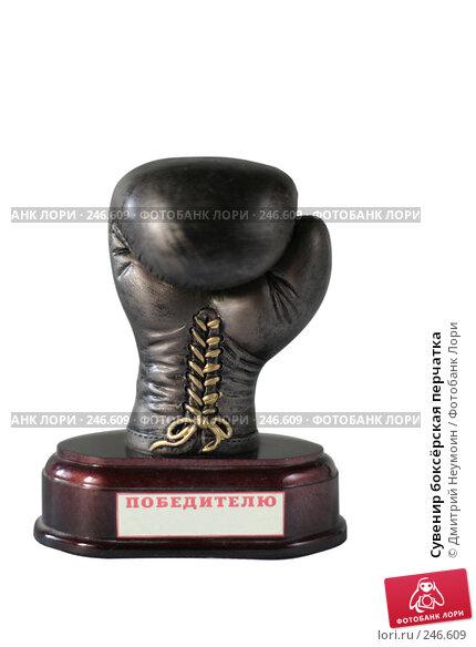 Сувенир боксёрская перчатка, эксклюзивное фото № 246609, снято 12 июля 2006 г. (c) Дмитрий Неумоин / Фотобанк Лори