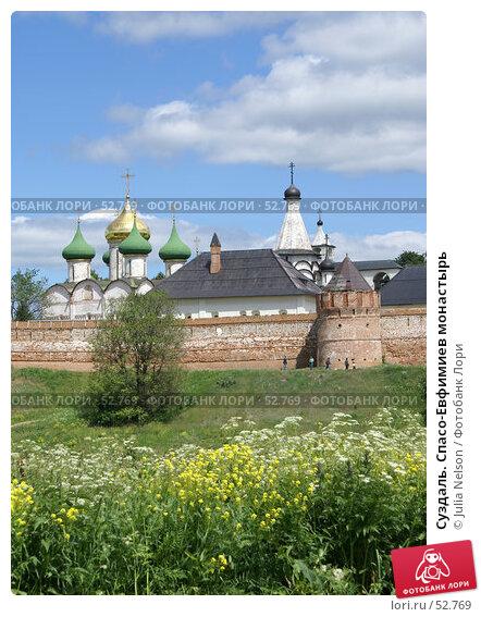Суздаль. Спасо-Евфимиев монастырь, фото № 52769, снято 11 июня 2007 г. (c) Julia Nelson / Фотобанк Лори