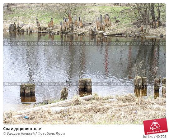 Сваи деревянные, фото № 40705, снято 30 апреля 2007 г. (c) Удодов Алексей / Фотобанк Лори