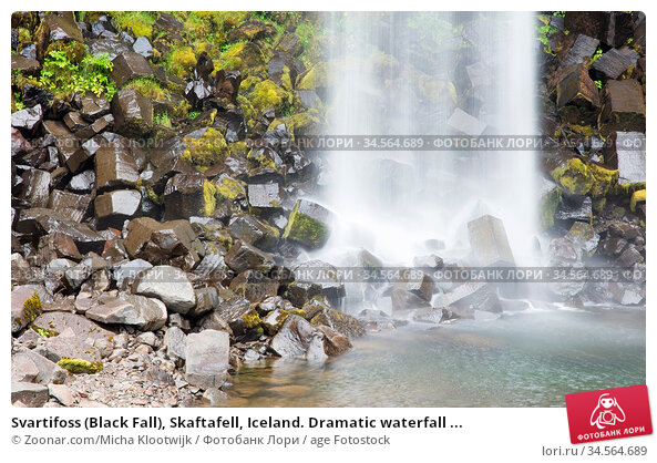 Svartifoss (Black Fall), Skaftafell, Iceland. Dramatic waterfall ... Стоковое фото, фотограф Zoonar.com/Micha Klootwijk / age Fotostock / Фотобанк Лори