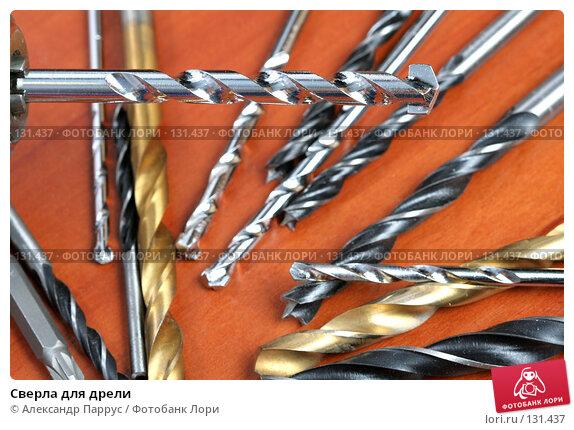 Сверла для дрели, фото № 131437, снято 28 ноября 2007 г. (c) Александр Паррус / Фотобанк Лори