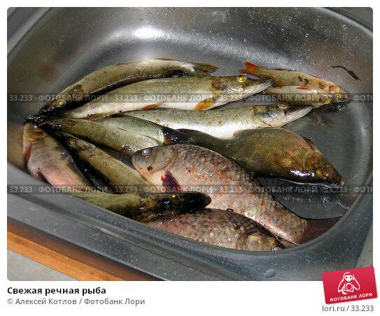 Свежая речная рыба, эксклюзивное фото № 33233, снято 27 июня 2004 г. (c) Алексей Котлов / Фотобанк Лори
