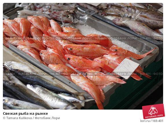 Свежая рыба на рынке, фото № 169401, снято 31 декабря 2007 г. (c) Tamara Kulikova / Фотобанк Лори