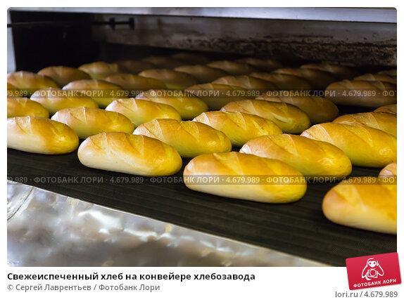 Купить «Свежеиспеченный хлеб на конвейере хлебозавода», фото № 4679989, снято 28 мая 2013 г. (c) Сергей Лаврентьев / Фотобанк Лори