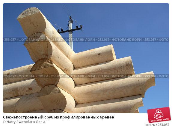 Купить «Свежепостроенный сруб из профилированных бревен», фото № 253057, снято 17 июня 2005 г. (c) Harry / Фотобанк Лори