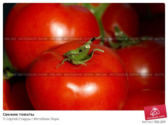 Свежие томаты, фото № 306269, снято 1 июня 2008 г. (c) Сергей Старуш / Фотобанк Лори