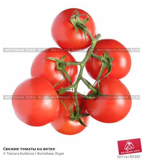 Свежие томаты на ветке, фото № 63937, снято 21 июля 2007 г. (c) Tamara Kulikova / Фотобанк Лори