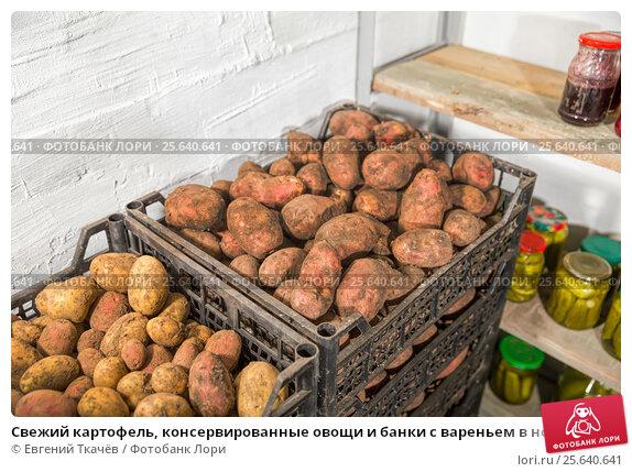 Купить «Свежий картофель, консервированные овощи и банки с вареньем в новом погребе», фото № 25640641, снято 5 октября 2014 г. (c) Евгений Ткачёв / Фотобанк Лори