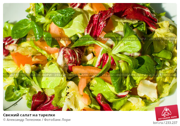 Свежий салат на тарелке, фото № 233237, снято 28 января 2008 г. (c) Александр Телеснюк / Фотобанк Лори