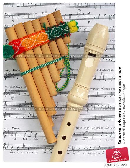Купить «Свирель и флейта лежат на партитуре», фото № 102537, снято 18 декабря 2017 г. (c) Алексей Баринов / Фотобанк Лори