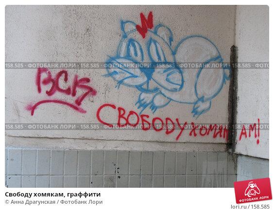 Свободу хомякам, граффити, фото № 158585, снято 23 декабря 2007 г. (c) Анна Драгунская / Фотобанк Лори