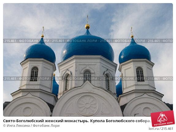 Свято-Боголюбский женский монастырь. Купола Боголюбского собора., фото № 215461, снято 31 июля 2007 г. (c) Инга Лексина / Фотобанк Лори