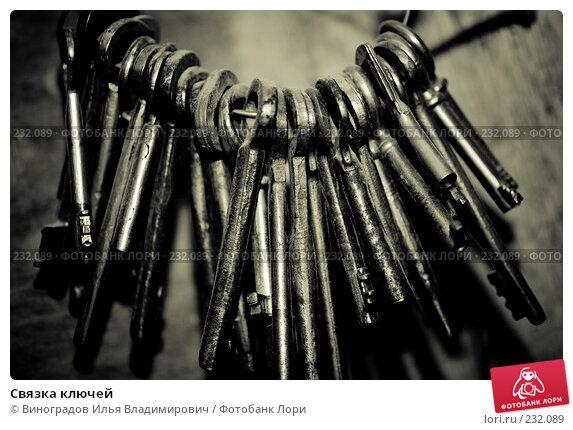 Купить «Связка ключей», фото № 232089, снято 25 декабря 2007 г. (c) Виноградов Илья Владимирович / Фотобанк Лори