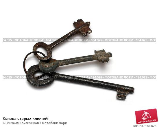 Купить «Связка старых ключей», фото № 184025, снято 19 января 2008 г. (c) Михаил Коханчиков / Фотобанк Лори