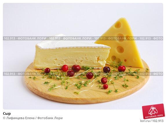 Купить «Сыр», фото № 102913, снято 20 ноября 2017 г. (c) Лифанцева Елена / Фотобанк Лори