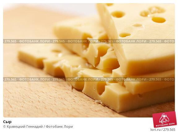 Сыр, фото № 279565, снято 20 сентября 2005 г. (c) Кравецкий Геннадий / Фотобанк Лори