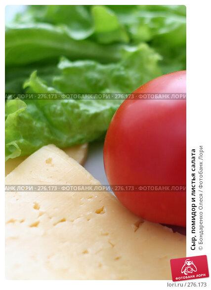 Сыр, помидор и листья салата, фото № 276173, снято 7 мая 2008 г. (c) Бондаренко Олеся / Фотобанк Лори
