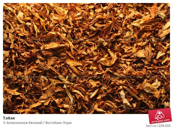 Табак, фото № 234533, снято 4 марта 2008 г. (c) Алексеенков Евгений / Фотобанк Лори