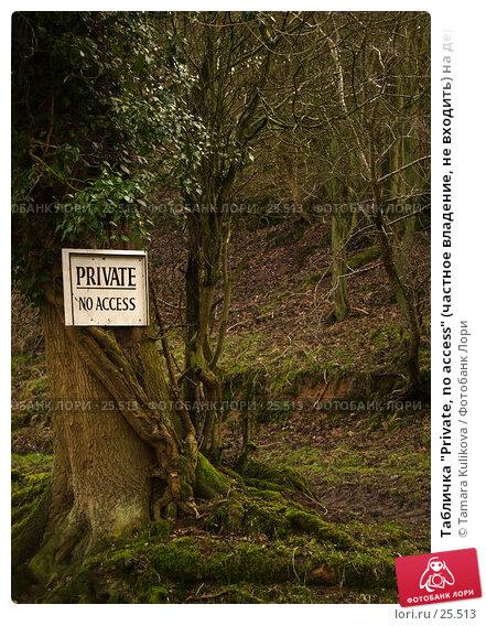 "Табличка ""Private, no access"" (частное владение, не входить) на дереве в лесу, фото № 25513, снято 11 февраля 2007 г. (c) Tamara Kulikova / Фотобанк Лори"