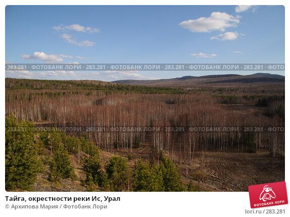 Тайга, окрестности реки Ис, Урал, фото № 283281, снято 10 мая 2008 г. (c) Архипова Мария / Фотобанк Лори