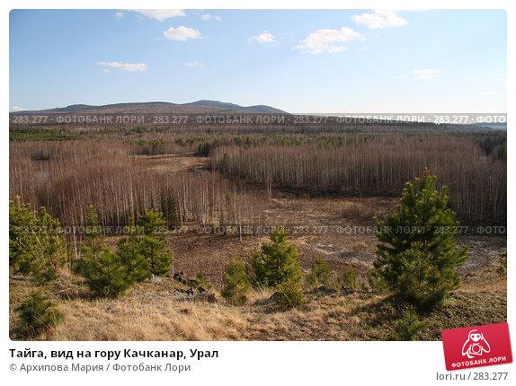 Тайга, вид на гору Качканар, Урал, фото № 283277, снято 10 мая 2008 г. (c) Архипова Мария / Фотобанк Лори