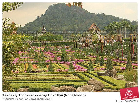Купить «Таиланд. Тропический сад Нонг Нуч (Nong Nooch)», фото № 6850769, снято 22 февраля 2014 г. (c) Алексей Сварцов / Фотобанк Лори
