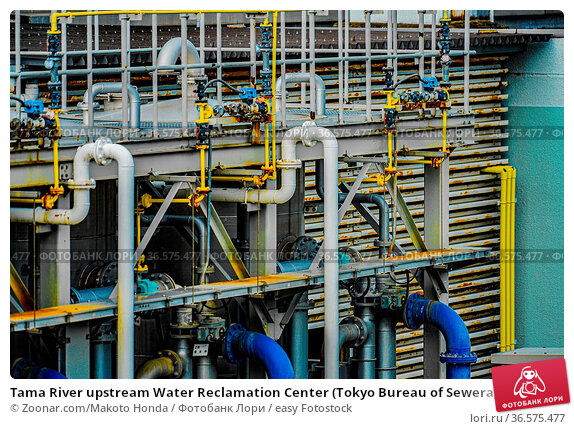 Tama River upstream Water Reclamation Center (Tokyo Bureau of Sewerage... Стоковое фото, фотограф Zoonar.com/Makoto Honda / easy Fotostock / Фотобанк Лори