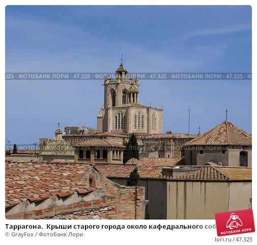 Купить «Таррагона.  Крыши старого города около кафедрального собора», фото № 47325, снято 20 мая 2007 г. (c) GrayFox / Фотобанк Лори