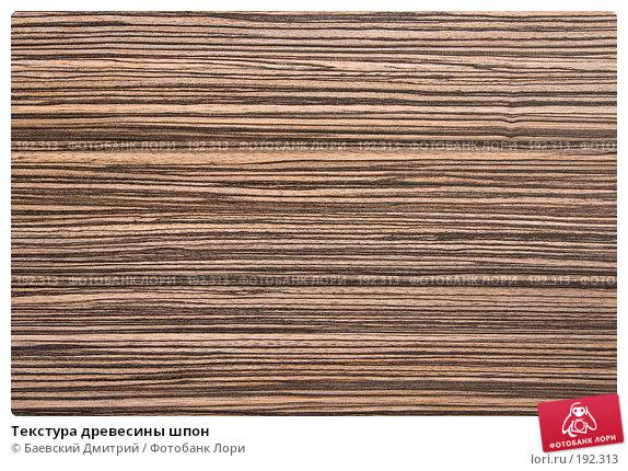 Купить «Текстура древесины шпон», фото № 192313, снято 2 февраля 2008 г. (c) Баевский Дмитрий / Фотобанк Лори