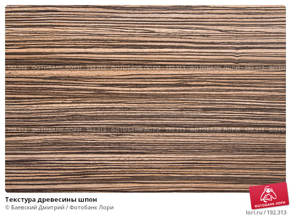 Текстура древесины шпон, фото № 192313, снято 2 февраля 2008 г. (c) Баевский Дмитрий / Фотобанк Лори