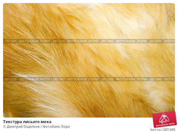 Текстура лисьего меха, фото № 287045, снято 17 декабря 2006 г. (c) Дмитрий Ощепков / Фотобанк Лори