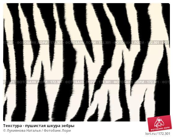 Текстура - пушистая шкура зебры, иллюстрация № 172301 (c) Лукиянова Наталья / Фотобанк Лори