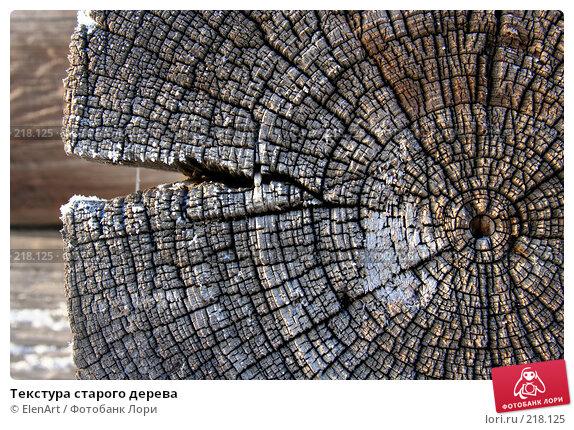 Текстура старого дерева, фото № 218125, снято 26 июля 2017 г. (c) ElenArt / Фотобанк Лори